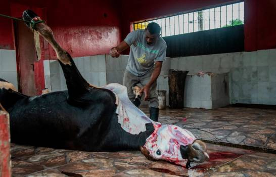 Pro Consumidor sobre mataderos: tenemos que seguir adelante en hacer que se cumplan las reglas